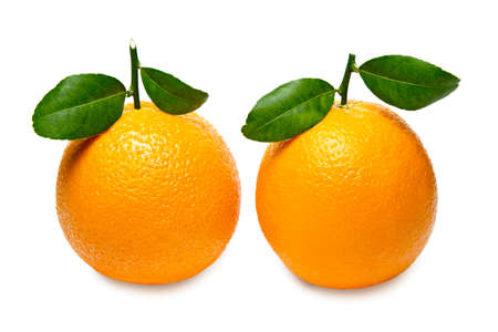 Oranges with leaves isolated on white background.
