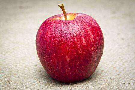 apple sack: Apple on sack.