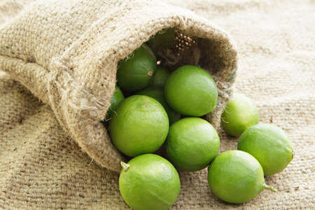 Limes in small sack. Stock Photo