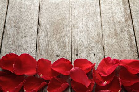 valentine s: Valentine s day background with petals of rose on wooden. Stock Photo