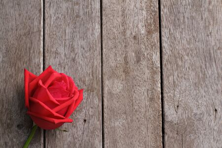valentine s day: Valentine s day background with rose on wooden.