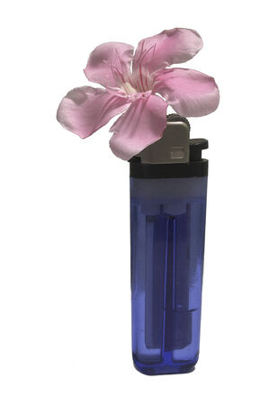 Lighter and Flower Stock Photo - 26403267