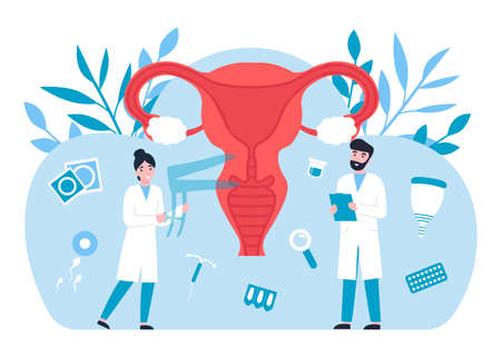 Gynecology concept, female reproductive system, doctors gynecologist, female consultation. Flat vector cartoon modern illustration.