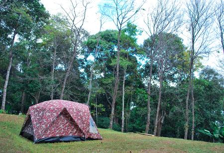 mai: Camping in Chiang mai