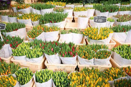 Beautiful tulips stall in Amsterdam Stock Photo