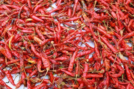 Red hot pepper photo