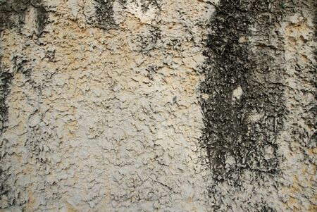 Roughly grunge concrete wall background Stock Photo - 14811819