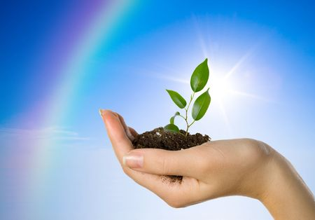 enviroment: Hand with a plant on a background of the blue sky and a rainbow Stock Photo