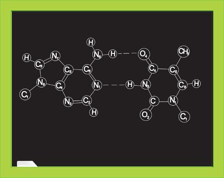 nucleotides: Pizarra con f�rmula qu�mica. ADN. Ilustraci�n vectorial  Vectores