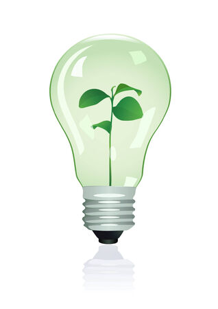 photosynthesis: Plant in lamp. Vector illustration