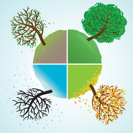 Change of seasons of year. Vector illustration Stock Vector - 3613493