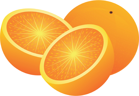edibles: Vector oranges. Illustration and design elements