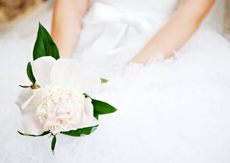 Bride with peony flower in hands photo
