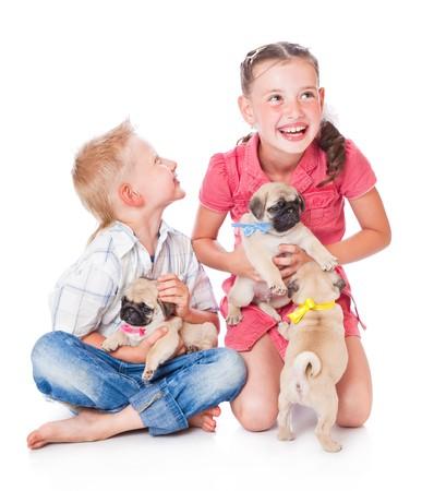 puppy love: Hermano y hermana. Aislados en fondo blanco  Foto de archivo