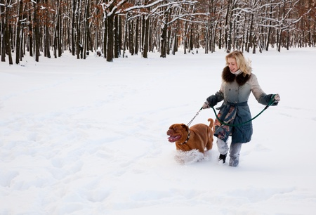 a cute woman walks in the park with her dog photo