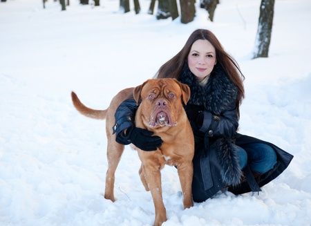 french mastiff: a smiling woman is sitting at the snow with her dog Stock Photo