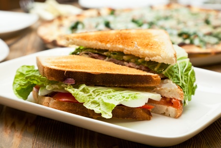 A white plate with the sandwich Stock Photo - 9593793