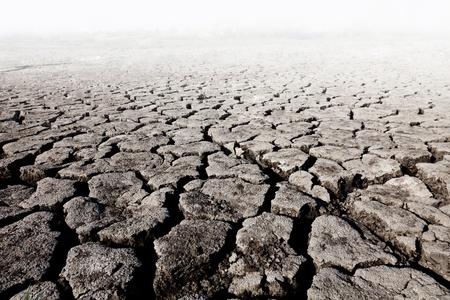 nieużytki: ziemia z suchym popÄ™kanej ziemi
