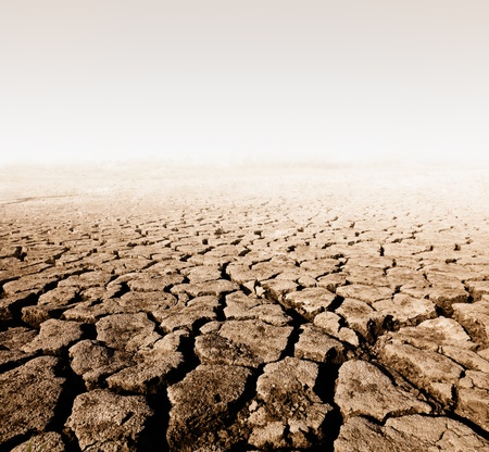 waterless:  land with dry cracked ground