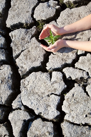 land with dry cracked ground Stock Photo - 9978168