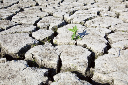 land with dry cracked ground photo