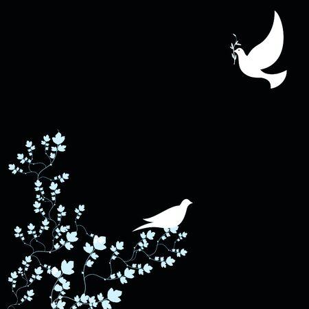 peace doves isolated on black background Stock Photo