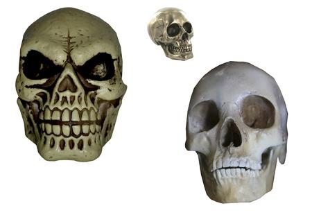 halloween skulls isolated on white background