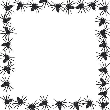 samhain: spider border isolated on white background Illustration
