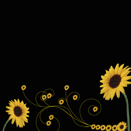 sunflowers border Vector