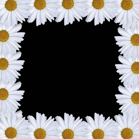 daisy border Stock Vector - 7119849