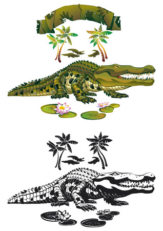 Nile crocodile with a predatory gaze Stock Vector - 8675321