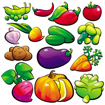 The vegetables Illustration