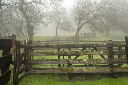 Old Ranch in Fog