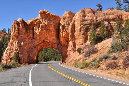 Road Through Utah Red Rock Country Banco de Imagens