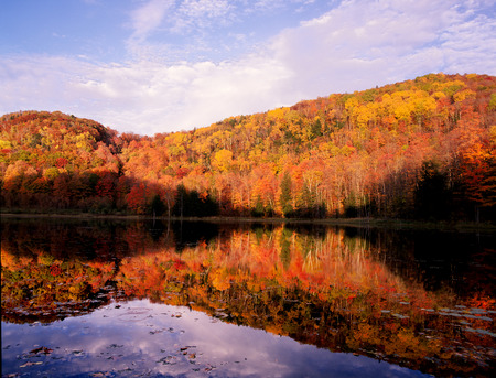 hampshire: New England Colors in Autumn Pond Reflection Stock Photo