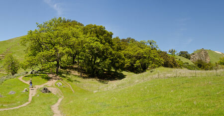 Summer Hiking and Trails Panoramic