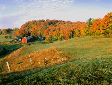 Vermont Jenne Hills Fram in Autumn