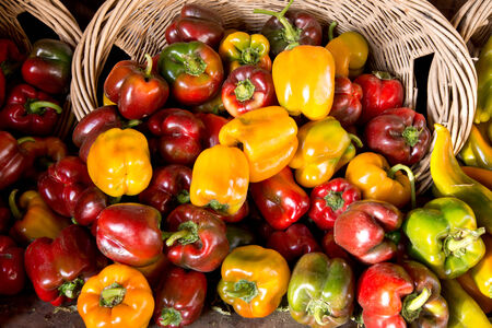 Basket of Mixed Colorful Peppers