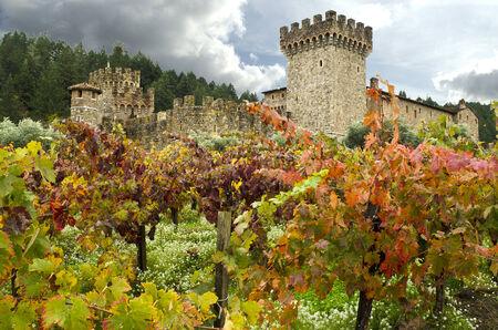 napa valley: Napa valley Castle Winery Vineyards, Clouds, Sky Editorial