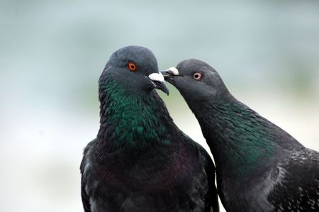 peck: Peck on the cheek