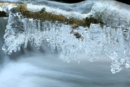water frozen: Icicles formed from melting snow hanging from the branches