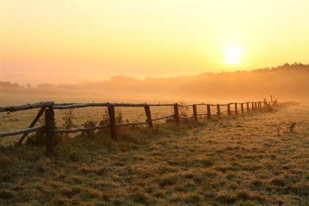 Sunrise over misty grassland with wooden fence in the foreground
