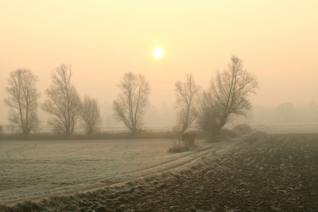 Rural landscape in the foggy November morning in southern Poland photo