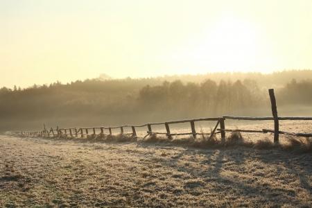 sunny cold days: Rural landscape at sunrise on a cold November day