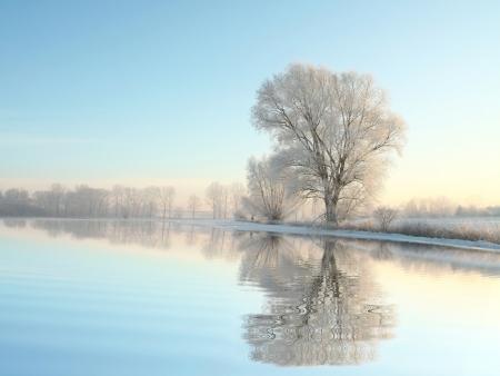 Schilderachtig winterlandschap van bevroren bomen verlicht door de rijzende zon Stockfoto