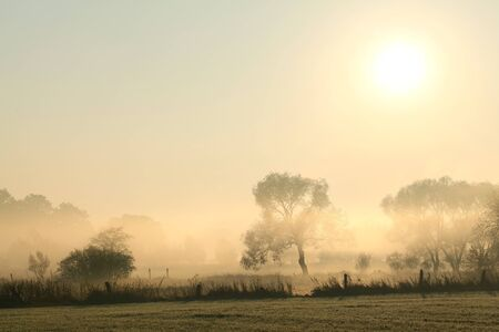 Rural landscape in a misty October morning photo