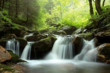Stroom stroomt door het bos in de vallei Stockfoto