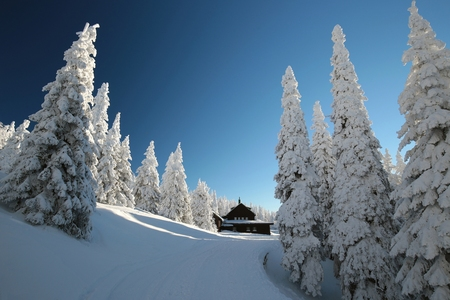 Cottage surrounded by winter scenery in the mountains