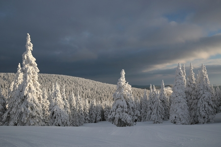 Winter scenery on the background of dark clouds