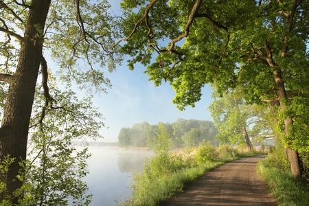 Landweg aan de rand van een meer op een mistige ochtend